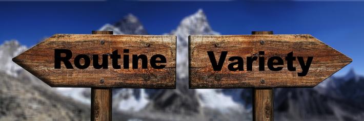 Routine vs Variety